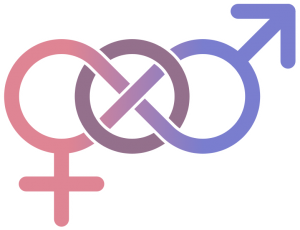 Bisexual Symbol 圖片來源:thesocietypages.org