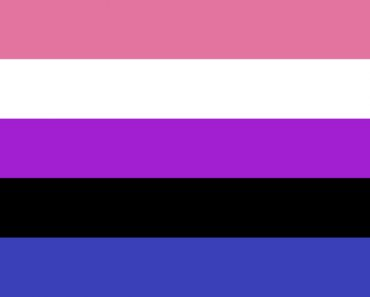 Gender Fluidity Pride Flag By McLennonSon - Own work, CC BY-SA 4.0,